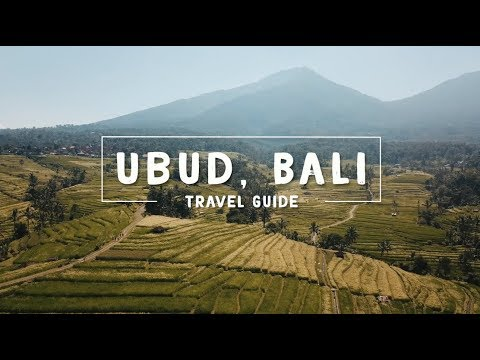 UBUD, BALI TRAVEL GUIDE (wow air application)